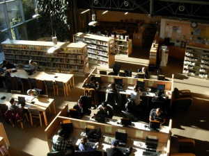 Policy Survey Paper: The Internet, Public Computing, and Public Libraries