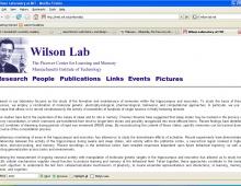 The Wilson Lab